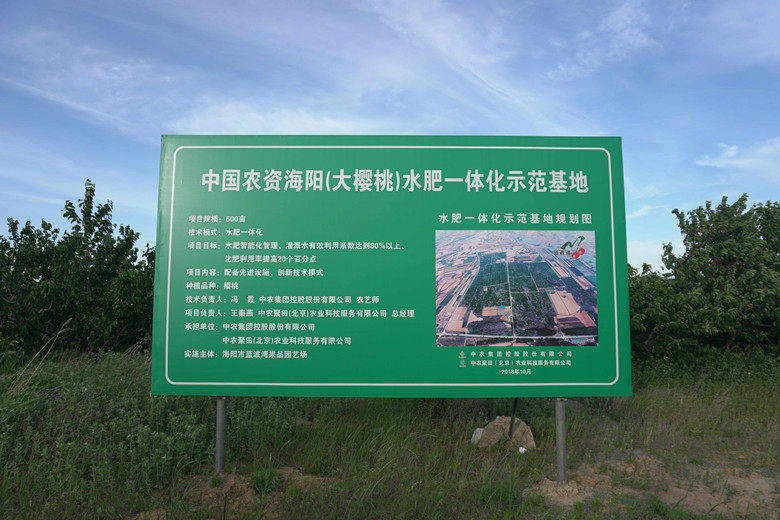 图三_副本780